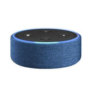 echo-dot-case